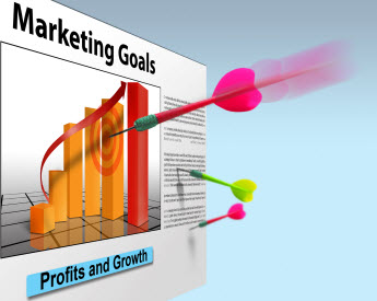 Eagan SEO Marketing Goals